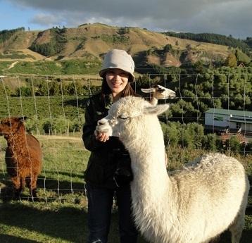 新西兰是哪个国家?新西兰旅游攻略(人均8000起)