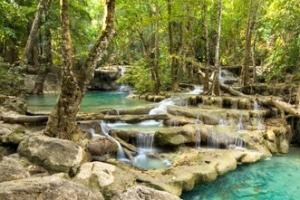 世界上最美的十大热带雨林排行榜 最美的热带雨林