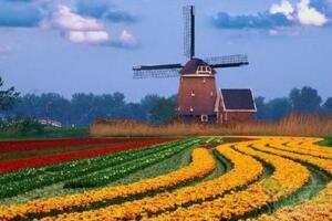 荷兰国土面积,41864平方千米(相当于1.5倍的吉林)