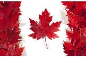 加拿大人口组成,英裔加拿大人达千万(50个民族成分)