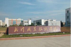 2017年湖北省专科学校排行榜:武汉职业技术学院第一,理工占多数