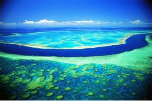 世界上最长的海沟,秘鲁-智利海沟(全长5900千米)