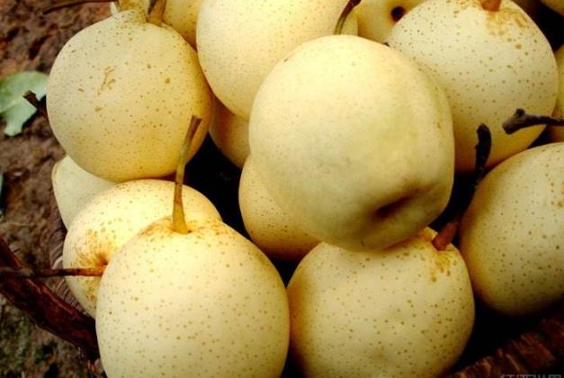 美白水果排行榜10强 让你轻松吃出白皙肌肤