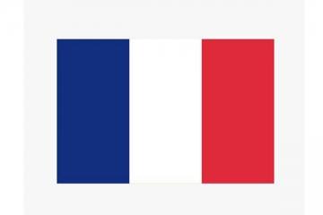 2019法国企业排名 2019法国营收最高的法国企业排名