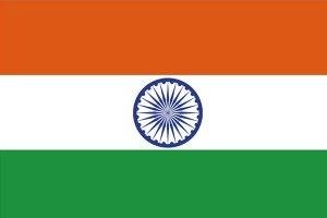 2019印度企业排名 2019印度营收最高的企业排名