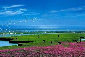 中国五大湖泊 八百里洞庭上榜 第一名最大时可达5100平方公里