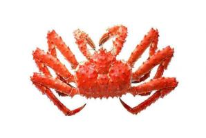 世界最贵十大蟹排行榜:帝王蟹身价高贵,第十产自中国
