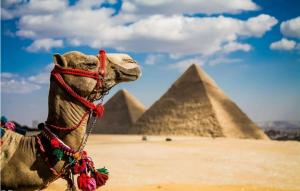 国内外带孩子必去的十大城市排行榜:埃及第一,第六你一定想不到